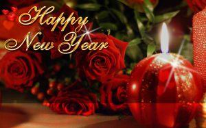 Celebrating the New Year!