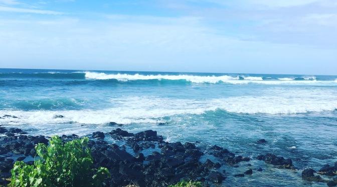 'Tis the Season (in Hawaii)